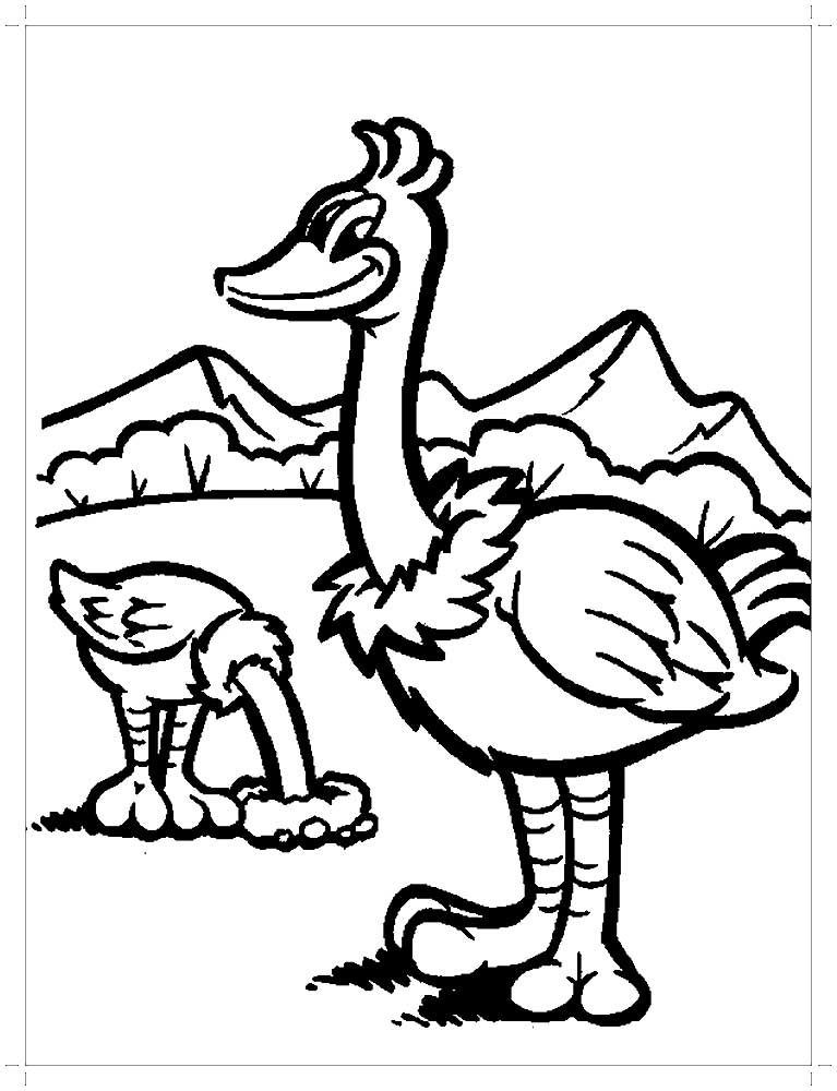 Ostrich drawing for kids