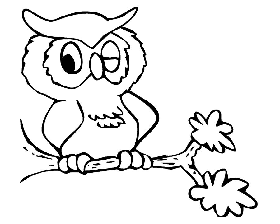 Cute owls coloring pages