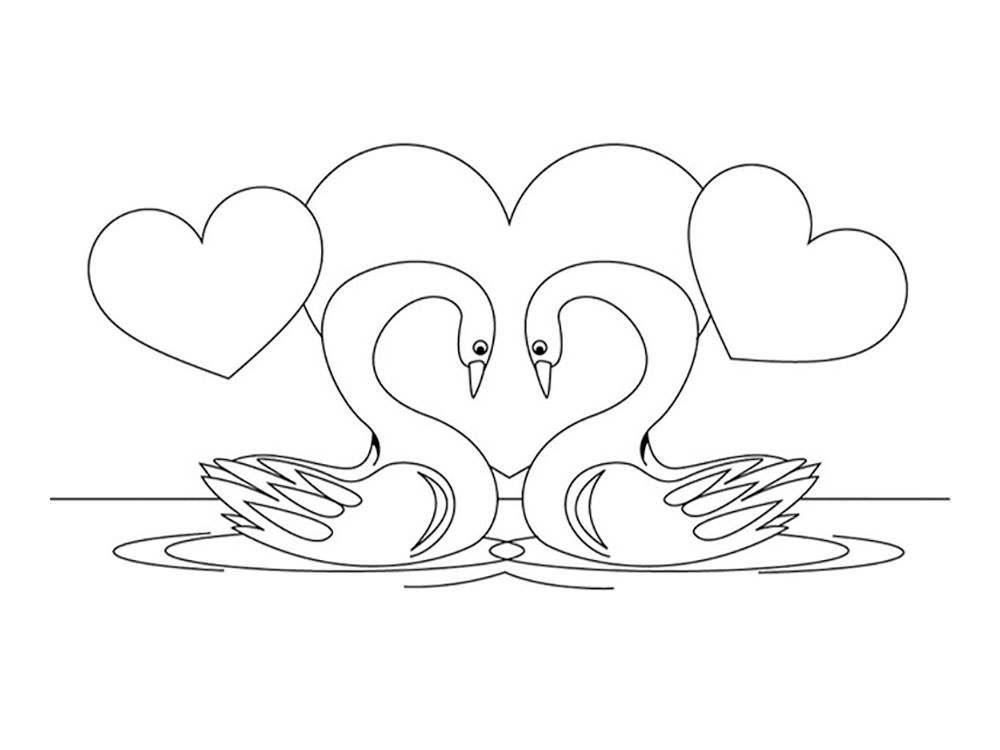 Swan drawing for kids